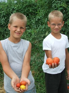 boys holding tomatoes